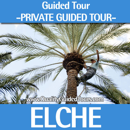 Elche, 4 hours private guided tour