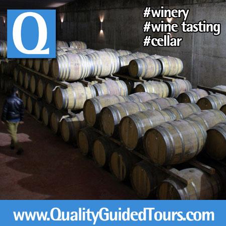 Wine Tasting (10)