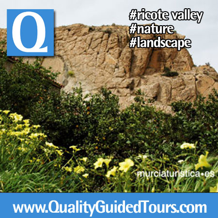 valle ricote murcia cartagena nature guided tour private shore excursion (5)