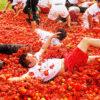 tomatina de buñol festival, Tomatina de Buñol Bus